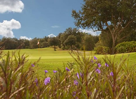 Stonegate Golf Club at Solivita - The Cypress Tee Times